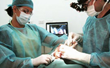 oral dental surgery